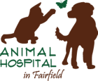 Animal Hospital in Fairfield